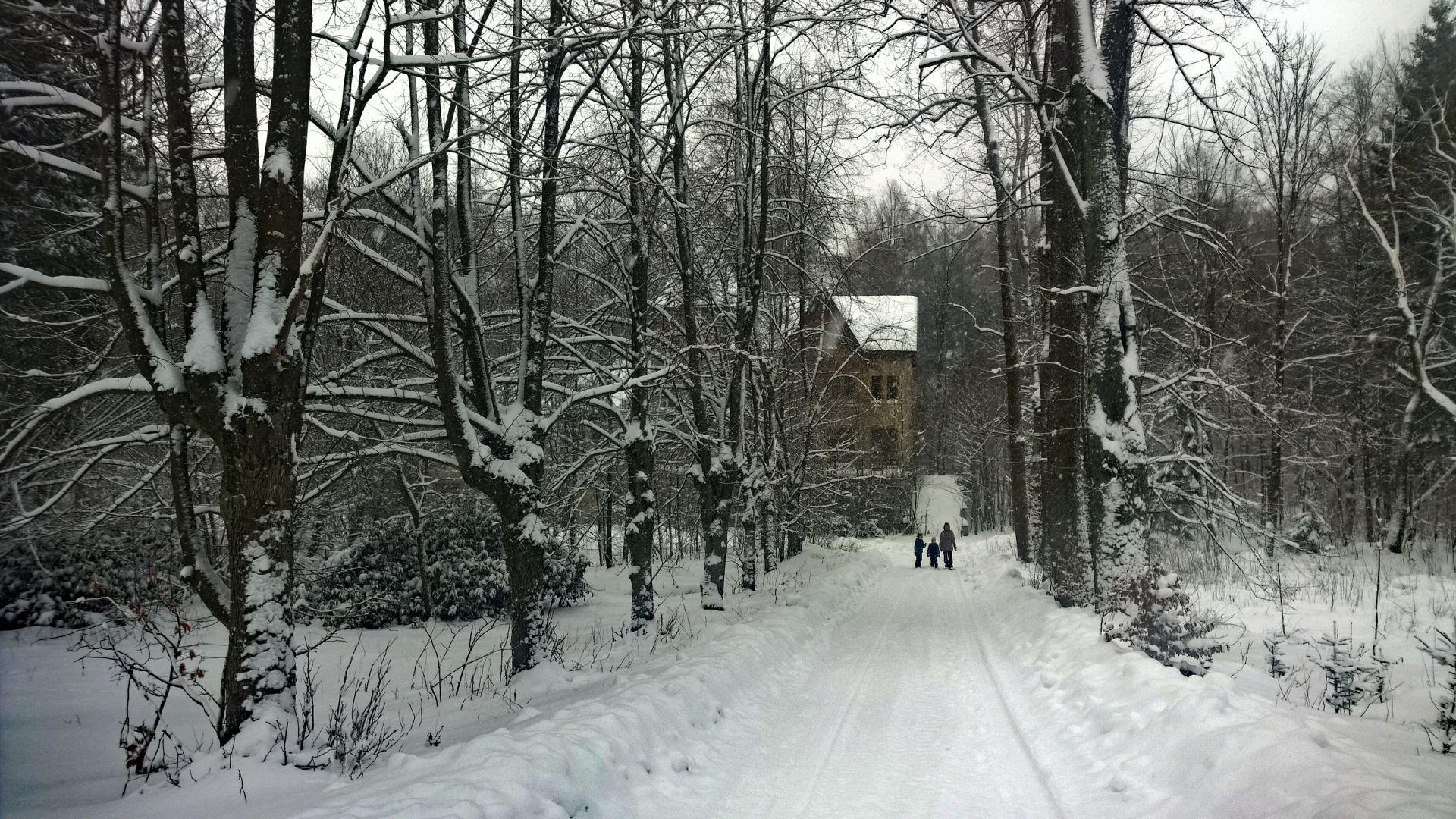 Vánoční pozdrav 2020 z Karlova údolí